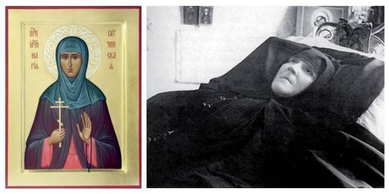 такшина позирует мария гатчинская фото самым очевидным универсальным